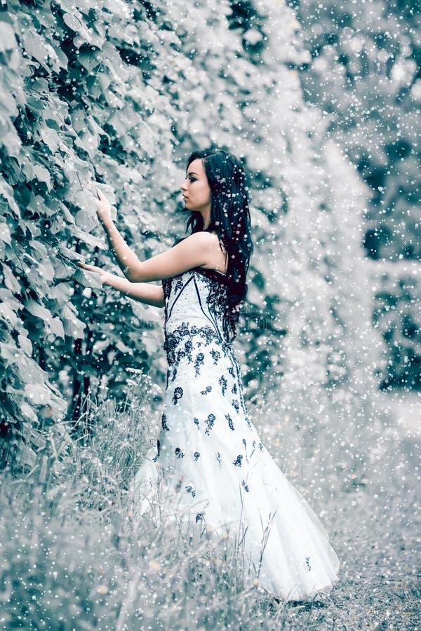 Rainha do gelo do inverno imagens de stock
