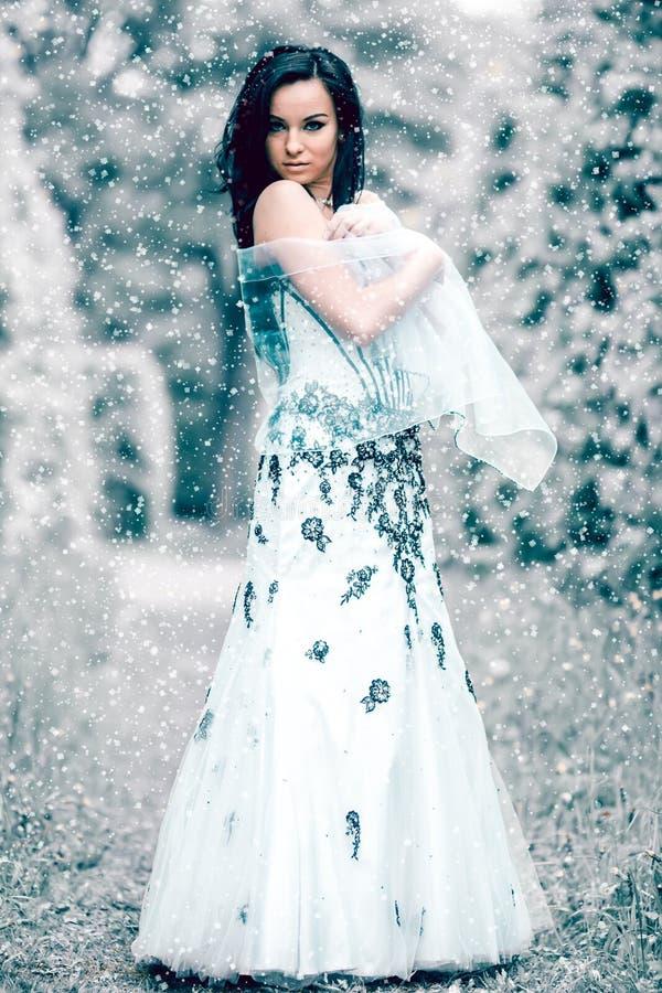 Rainha do gelo do inverno imagem de stock royalty free