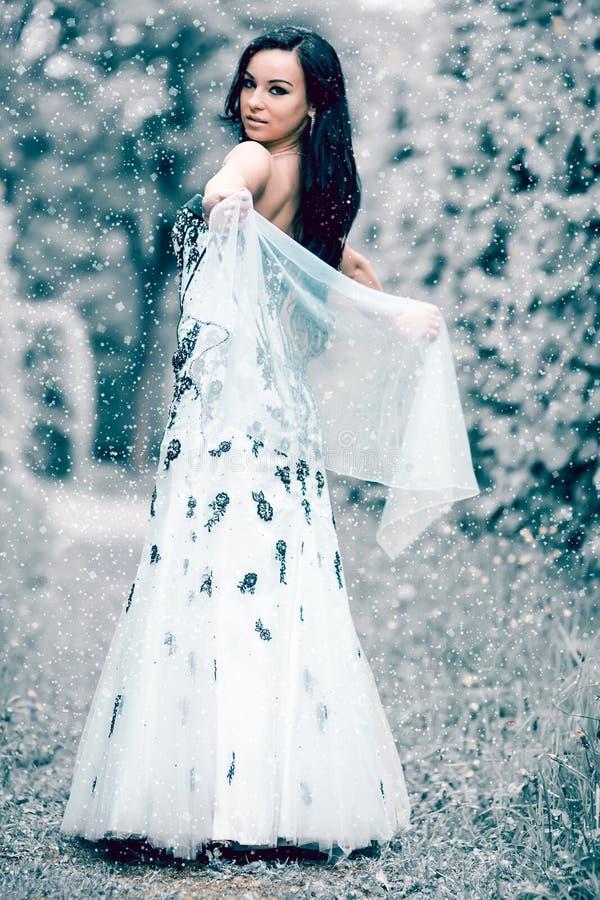 Rainha do gelo do inverno fotos de stock royalty free