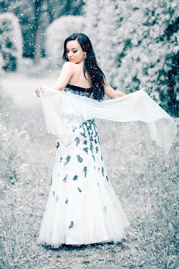Rainha do gelo do inverno fotos de stock