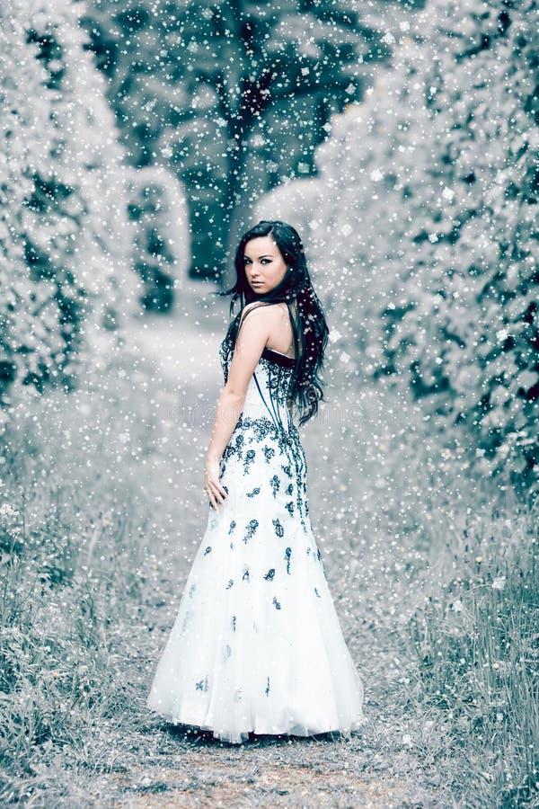 Rainha do gelo do inverno foto de stock royalty free