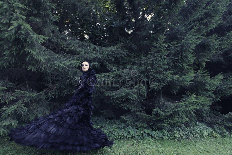 Rainha escura no parque fotografia de stock