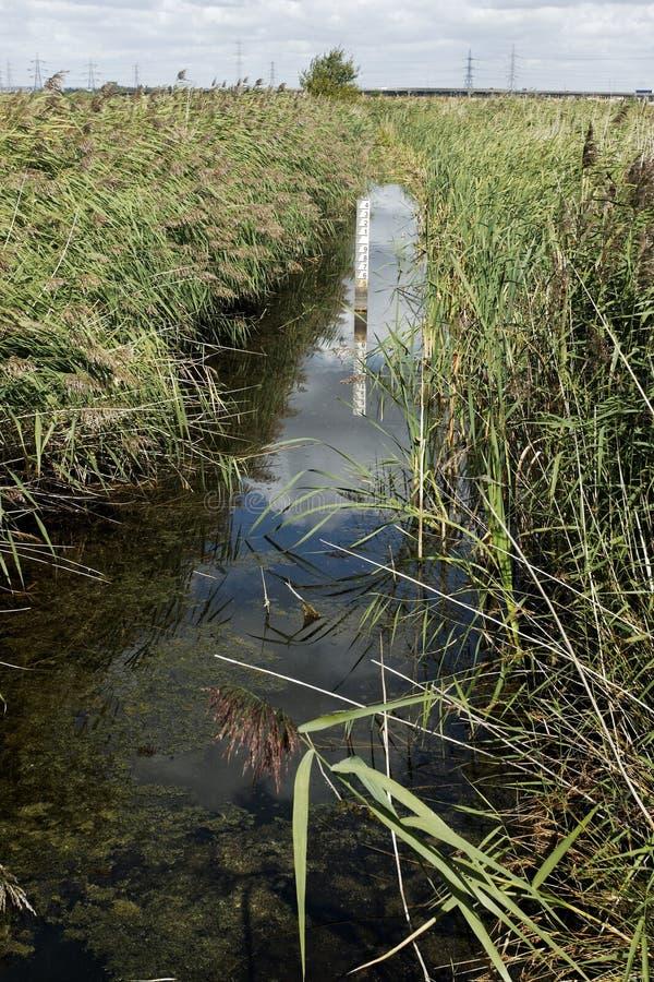 Free Rainham Marshes RSPB Reserve Stock Images - 32570324