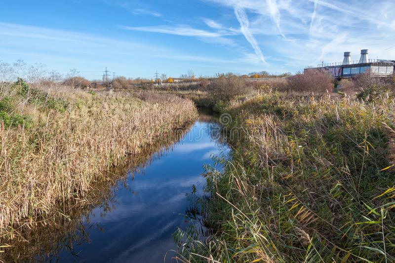 Rainham Marshes on a sunny day with a stream. Nature reserve in Rainham Marshes with a blue stream and reeds on a sunny day royalty free stock photography