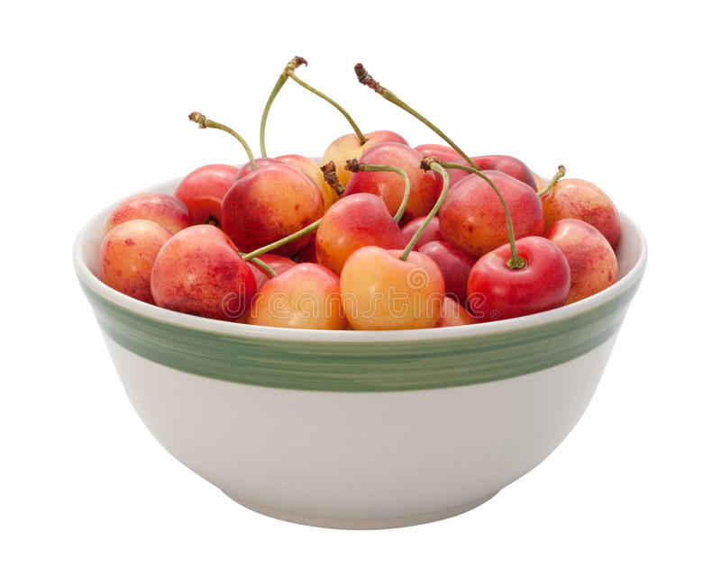 Download Rainier Cherries Isolated stock image. Image of food - 25833051