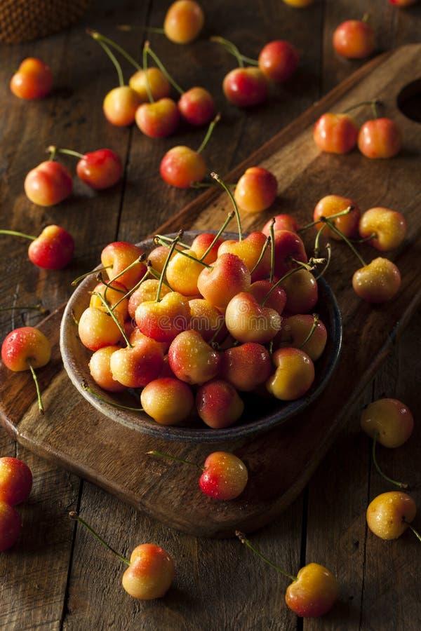 Rainier Cherries orgânico saudável imagem de stock royalty free