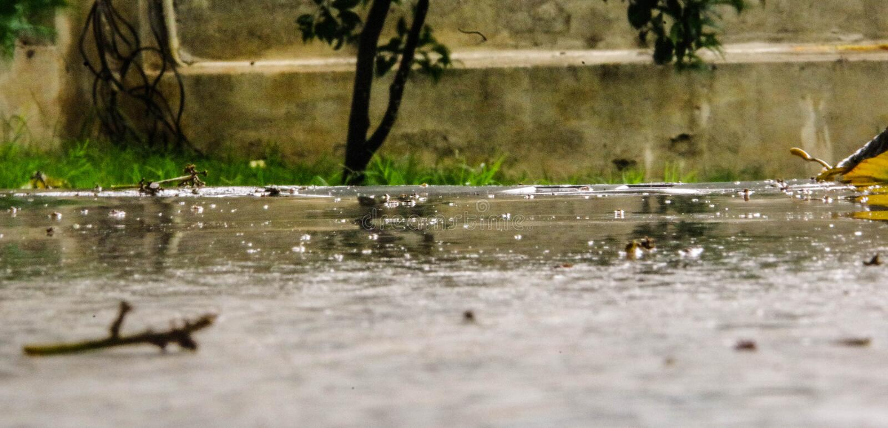 raining stock foto's