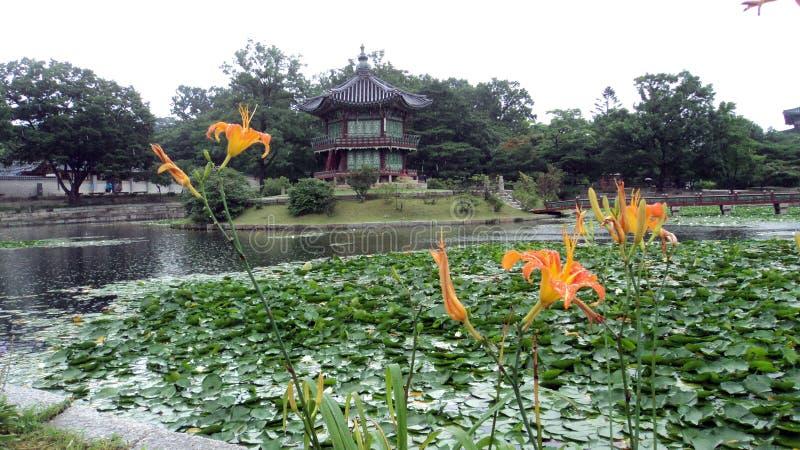 Raining inside the Gyeongbokgung palace, at the Lotus pond with orange flowers. Seoul, south Korea stock photography