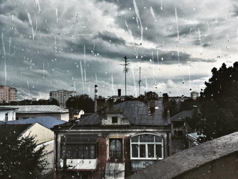 Rainly fotografia royalty free