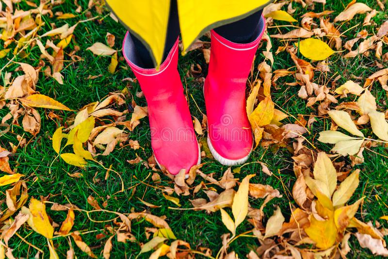Yellow raincoat. Rubber pink boots against. Conceptual image of legs in boots on green grass. Rainy autumn. Rubber pink boots against. Conceptual image of legs stock photography