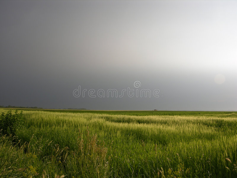 Download Rainy Day stock photo. Image of rain, nature, rurally, storm - 137330