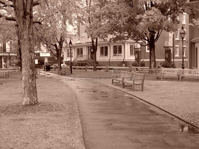 Rainy Day At The Park In Harvard Square Stock Photos