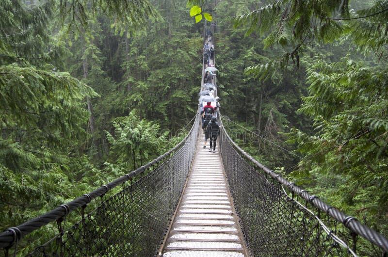 Rainy day suspension bridge walk stock image
