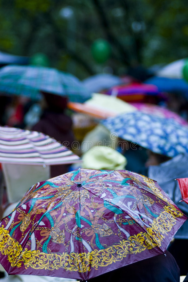 Rainy day umbrellas stock images