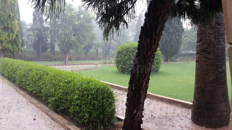 Rainy Days royalty free stock image