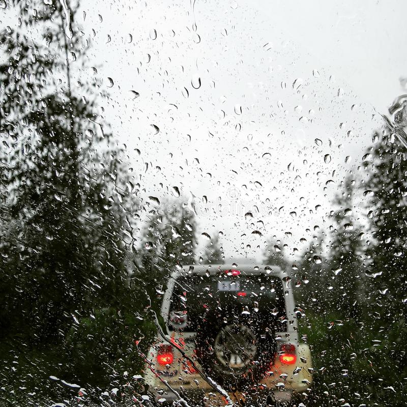Rainy drive in the woods royalty free stock photo
