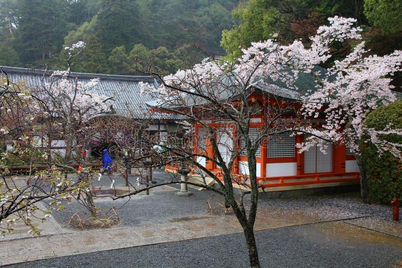Rainy Japan royalty free stock photo