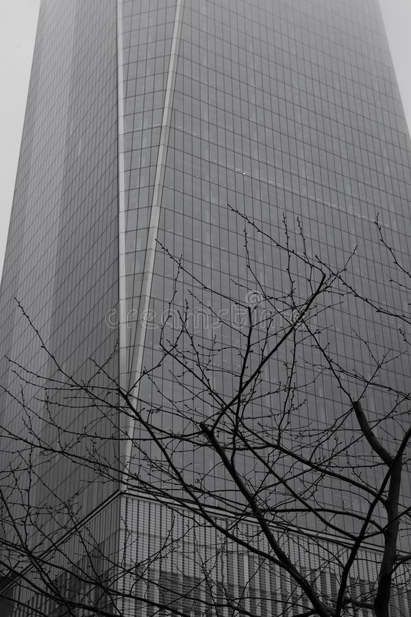 Rainy New York - World Trade Center and Tree Monochrome stock photos