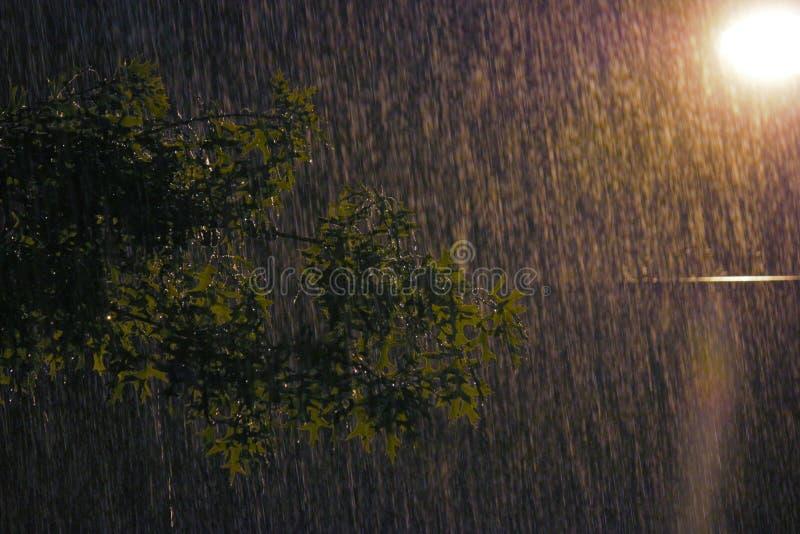 Rainy night. Downpour during hurricane irene street light stock image