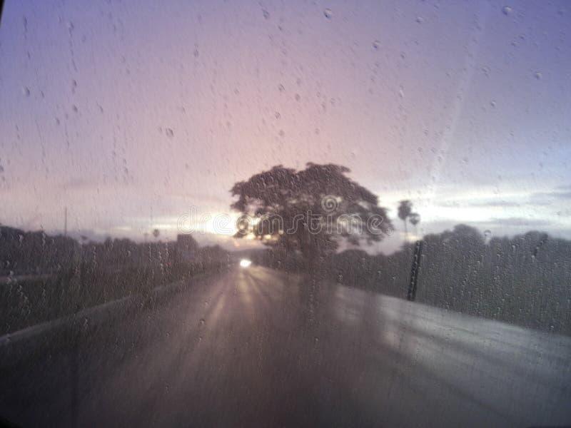 Rainy road royalty free stock photo