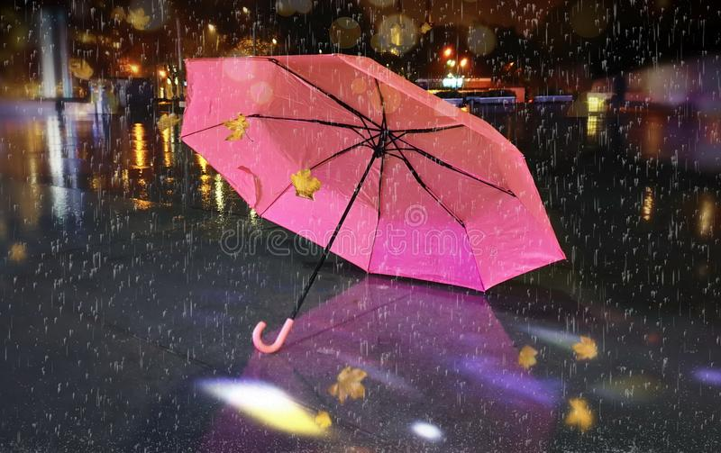 Rainy street pink umbrella reflection wet asphalt city night raindrops water reflection autumn leaves  fall season city evening li. Asphalt city night raindrops stock photography