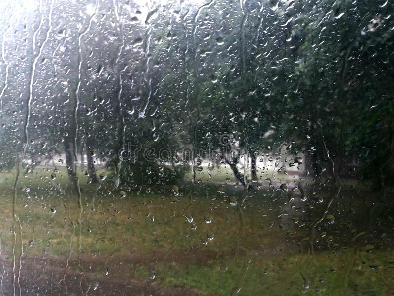Rainy window royalty free stock image