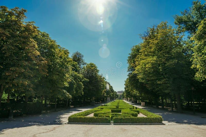 Raio de sol sobre o caminho no jardim verde em um parque do Madri fotografia de stock royalty free