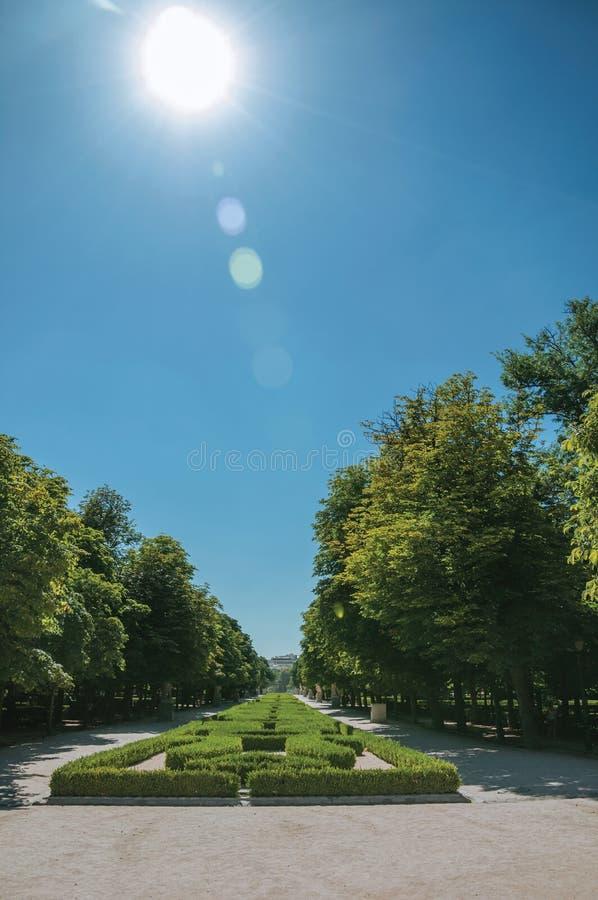 Raio de sol sobre o caminho no jardim verde em um parque do Madri fotos de stock royalty free