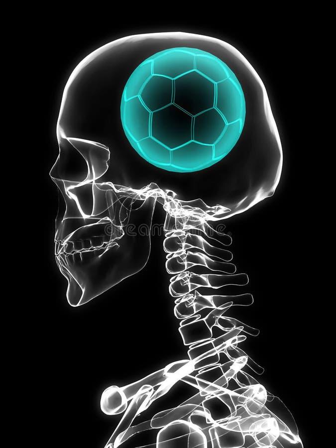 Raio X do crânio com bola de futebol ilustração royalty free