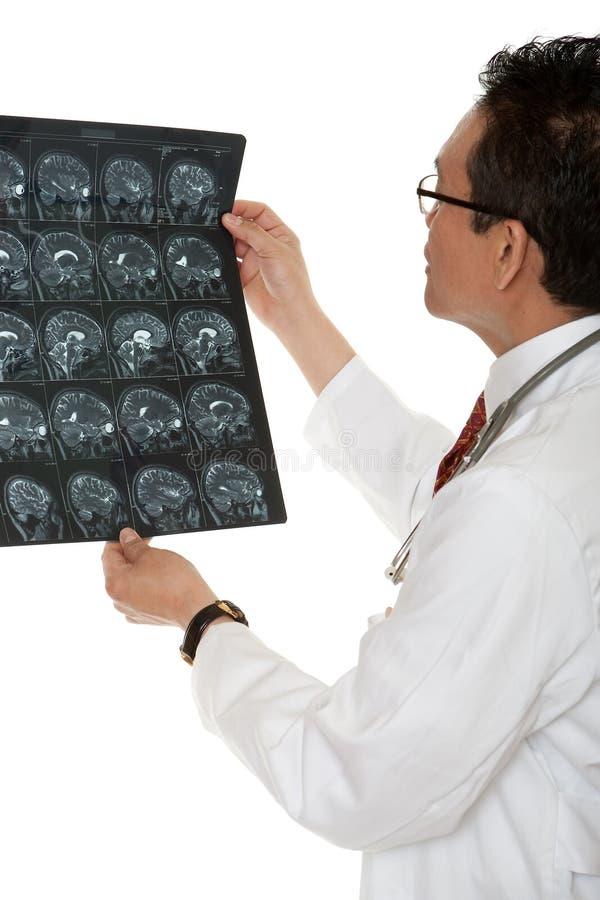 Raio X do diagnóstico do doutor imagens de stock royalty free