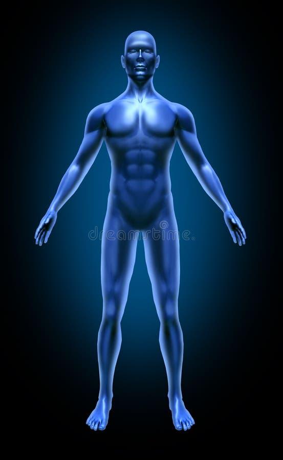 Raio X médico da inflamação da dor comum de corpo humano ilustração royalty free