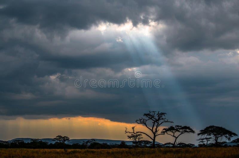 Raios de sol através das nuvens Tanzânia fotos de stock royalty free