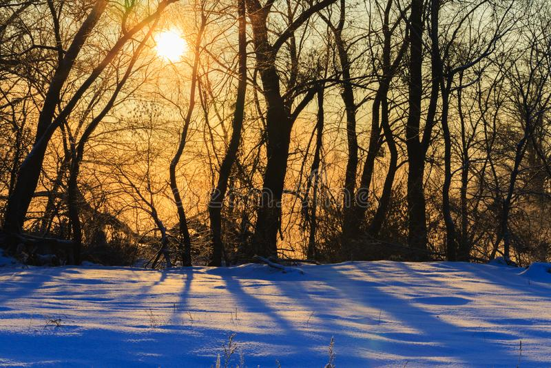 Raios mornos do sol que brilha na manhã gelado do inverno foto de stock