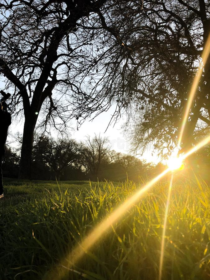 Raios surpreendentes do sol durante o por do sol fotografia de stock royalty free