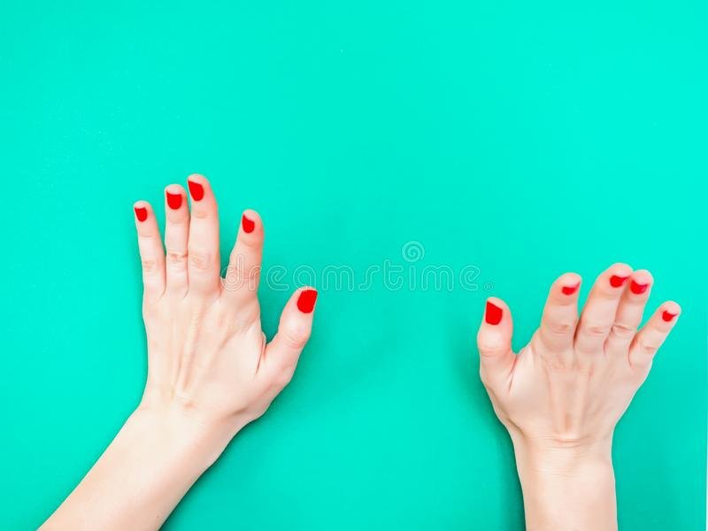 The Raise The Roof Hand Sign. Woman hands holding something invisible on isolated turquoise green color background. Prop. Up with hands something stock images