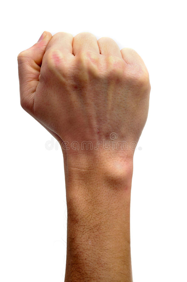 Download Raised fist stock photo. Image of nationalism, fascist - 17898632