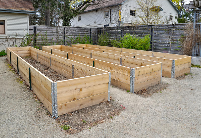 raised flower beds stock photo image of beds mulch. Black Bedroom Furniture Sets. Home Design Ideas