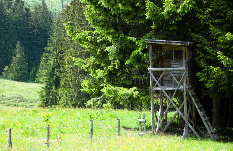 Download Raised Hide stock photo. Image of lookout, nature, hunting - 19795314