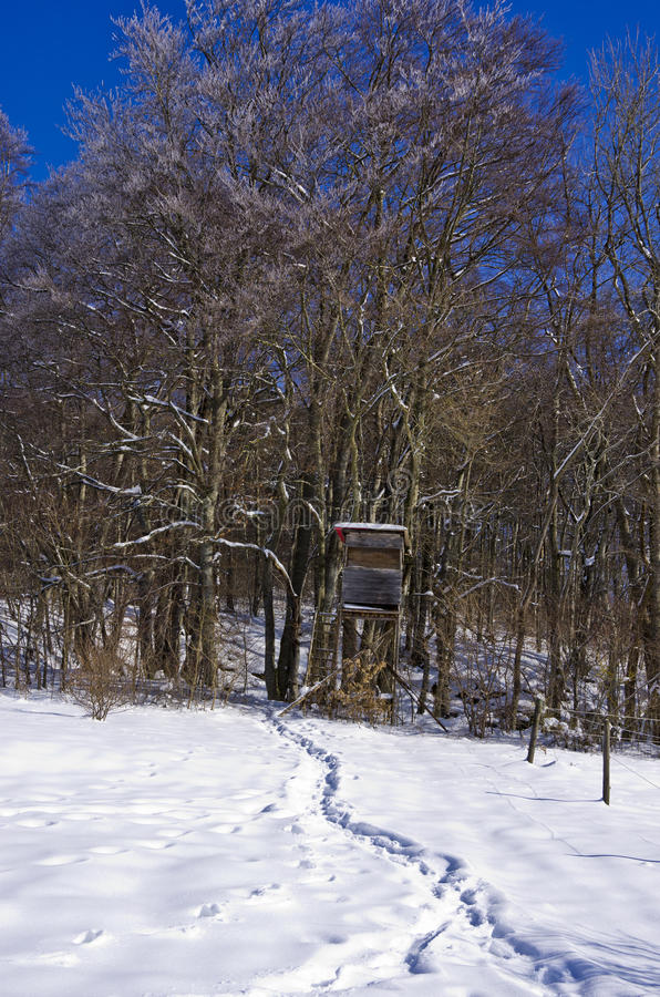 Raised Hide In Winter Forest