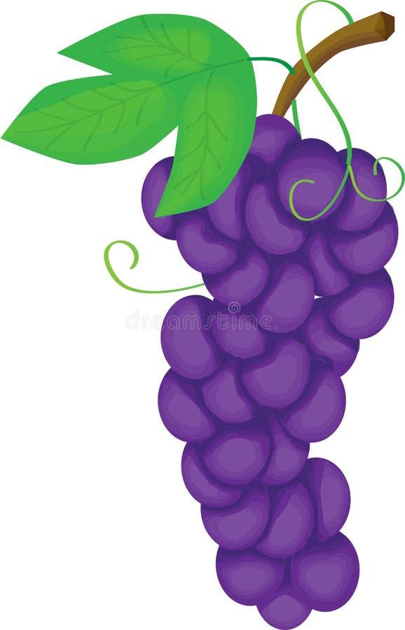 raisin illustration de vecteur