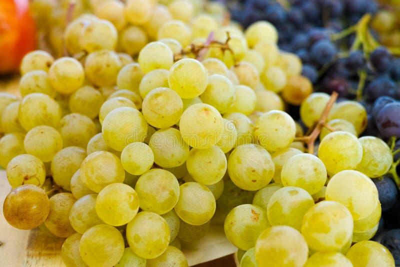 Raisin de muscat blanc et dessert doux et savoureux de raisin foncé -, hea photos libres de droits