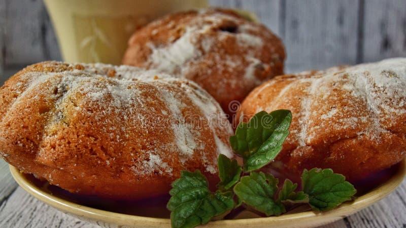 Raisin muffins with powdered sugar closeup stock photos