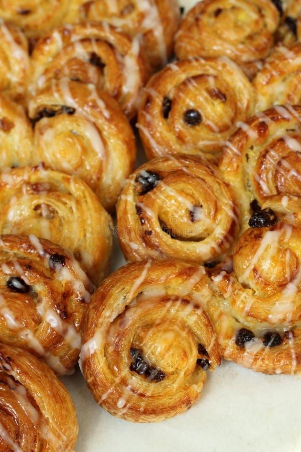 Raisin Sweet Danish Pastries. A Display of Raisin Brioche Sweet Danish Pastries royalty free stock image