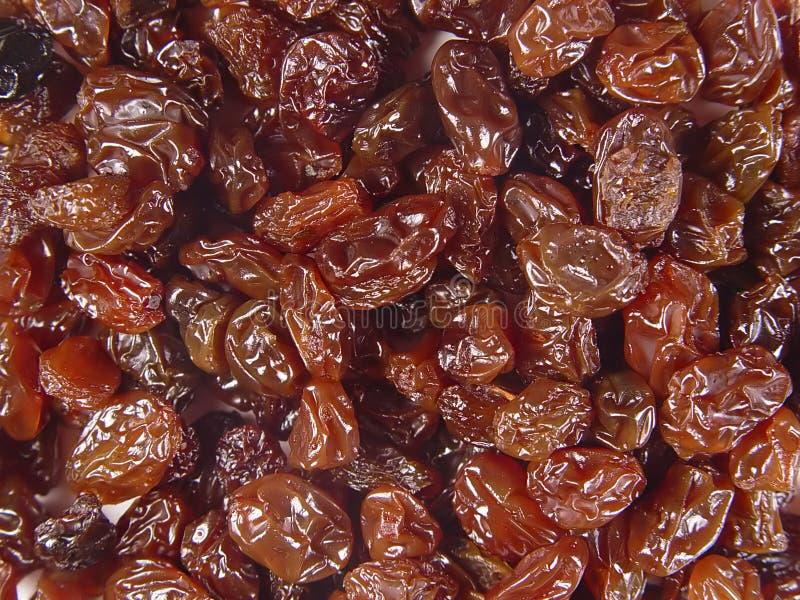 Download Raisins stock image. Image of treat, fruit, background, raisins - 11335