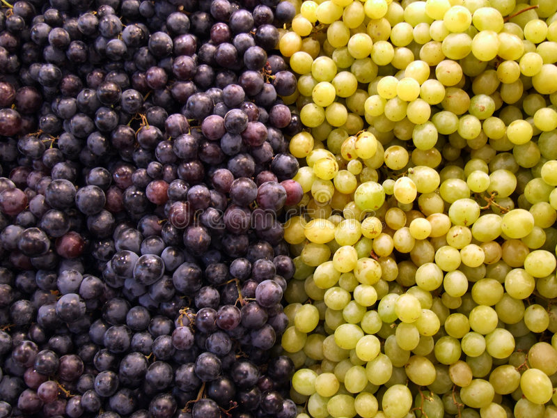 Raisins photos stock
