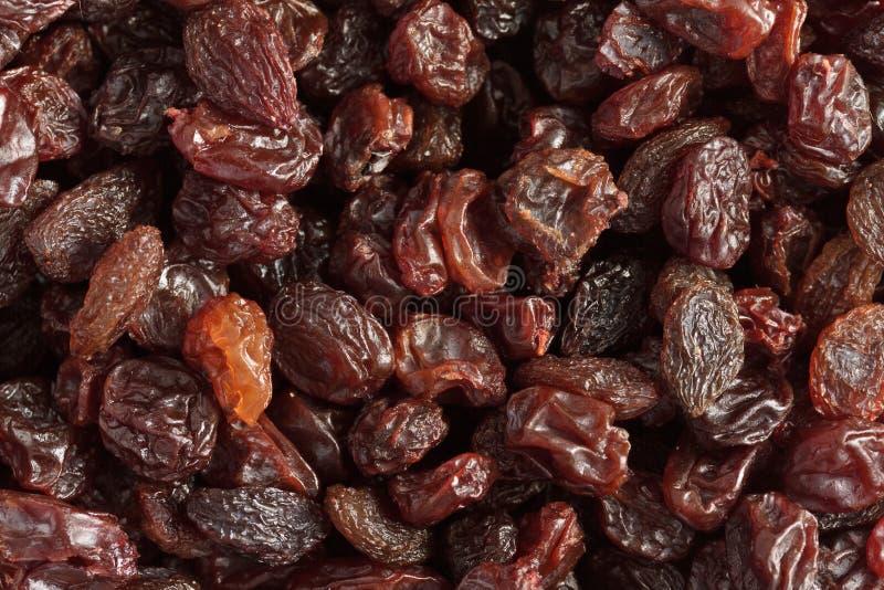 Download Raisins stock photo. Image of closeup, raisins, background - 17819288
