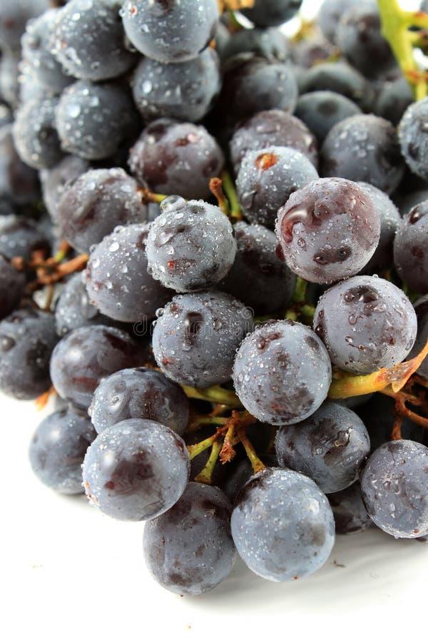 Raisins aspermes de couronnement photos stock