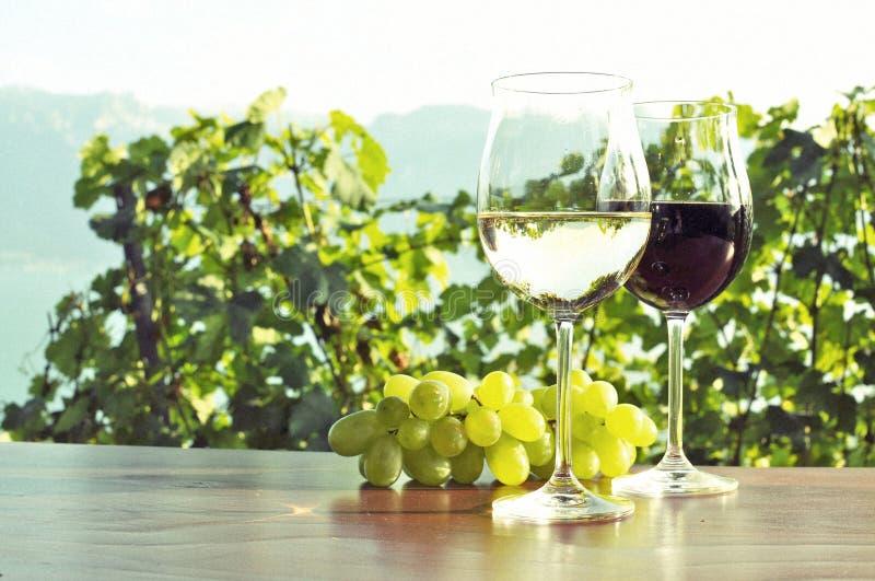 Raisins d'annonce de vin images libres de droits