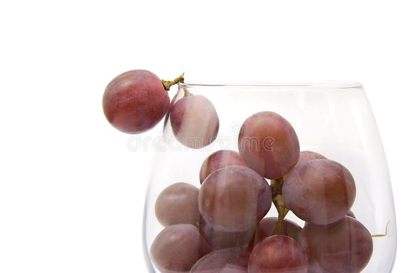 Raisins dans une glace photographie stock libre de droits