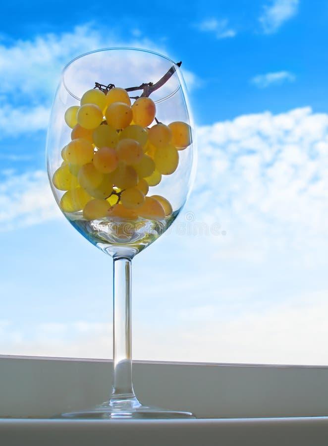 Raisins dans une glace images stock
